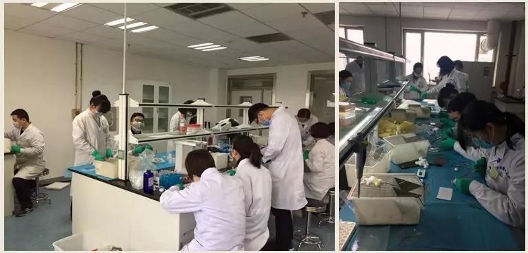 R&D Team of Allicin Pharm