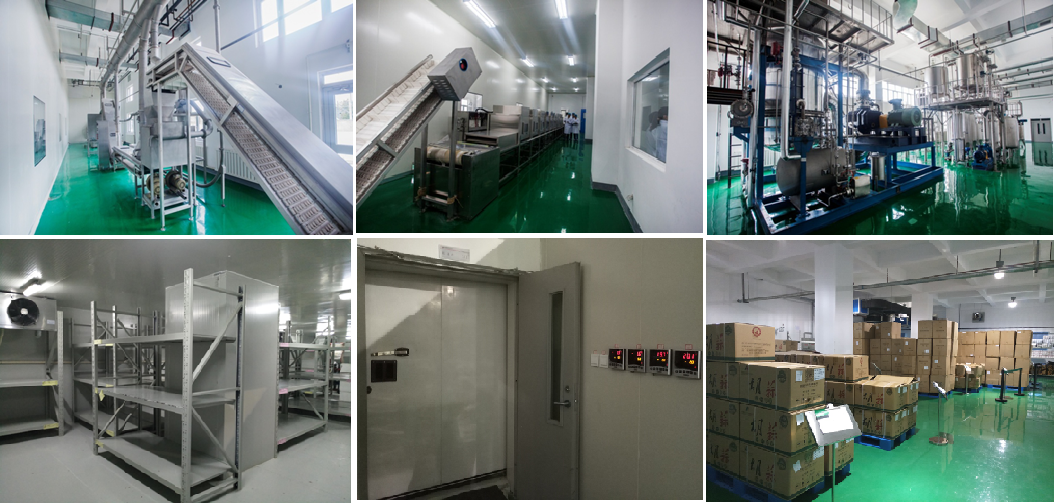 GMP Production Line, Allicin Pharm